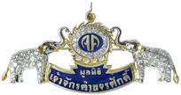 Gems-From-North-Thailand_06