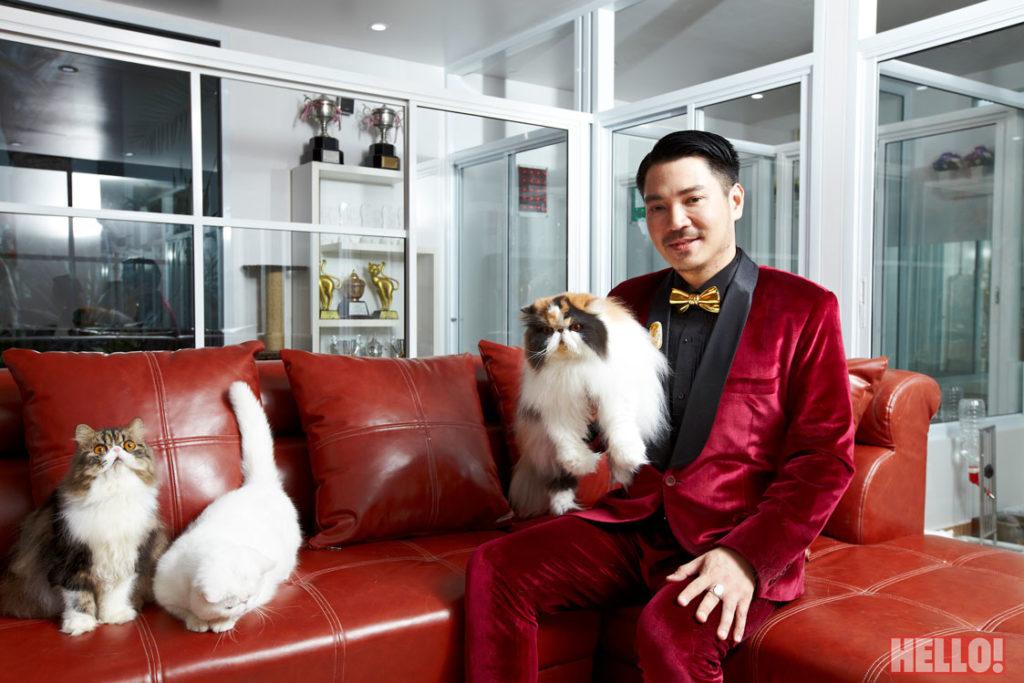 champion-persian-cat-of-asia_01