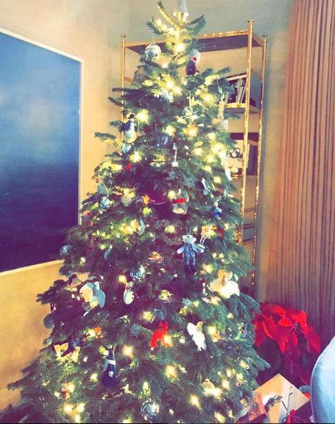 hollywood-celebrity-Christmas_14