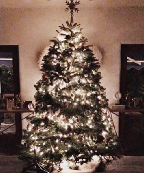 hollywood-celebrity-Christmas_16